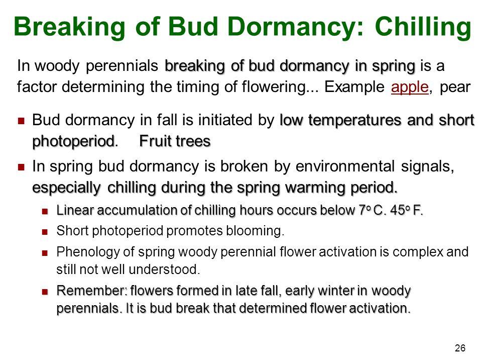 Breaking of Bud Dormancy: Chilling