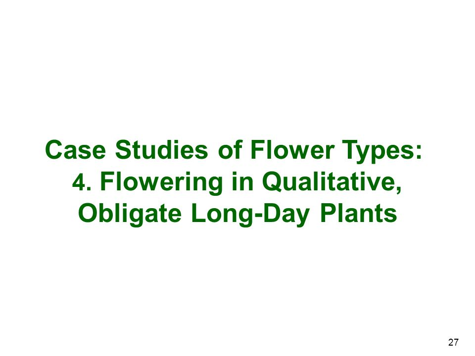 4. Flowering in Qualitative, Obligate Long-Day Plants