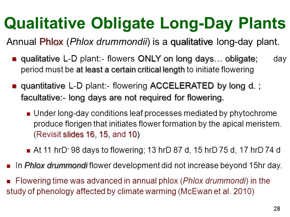 Qualitative Obligate Long-Day Plants