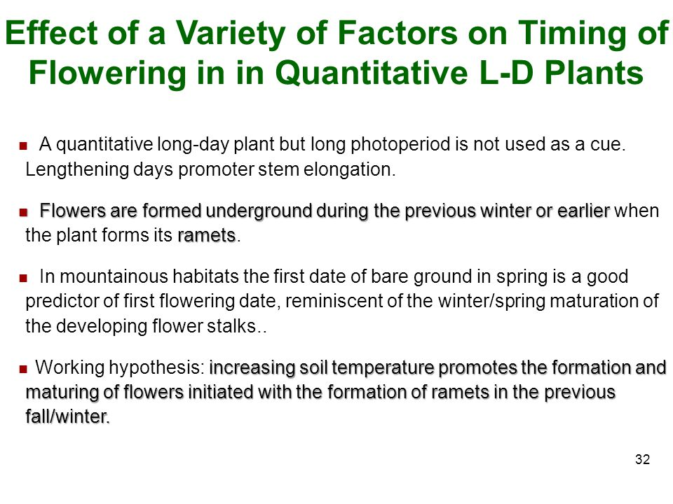 Effect of a Variety of Factors on Timing of Flowering in in Quantitative L-D Plants