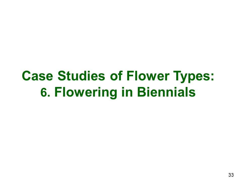 Case Studies of Flower Types: 6. Flowering in Biennials