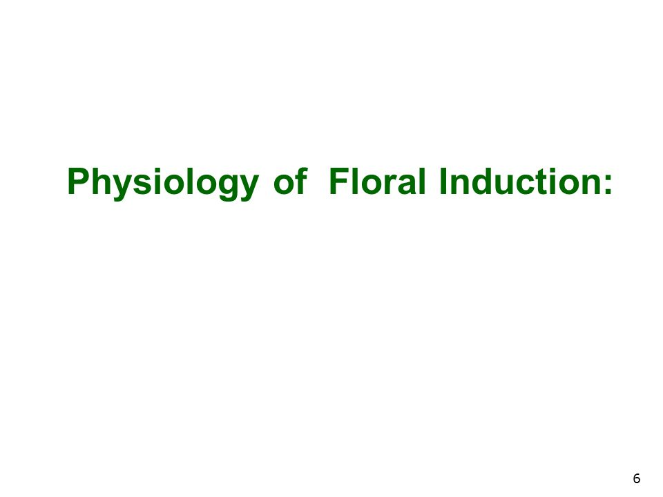 Physiology of Floral Induction: