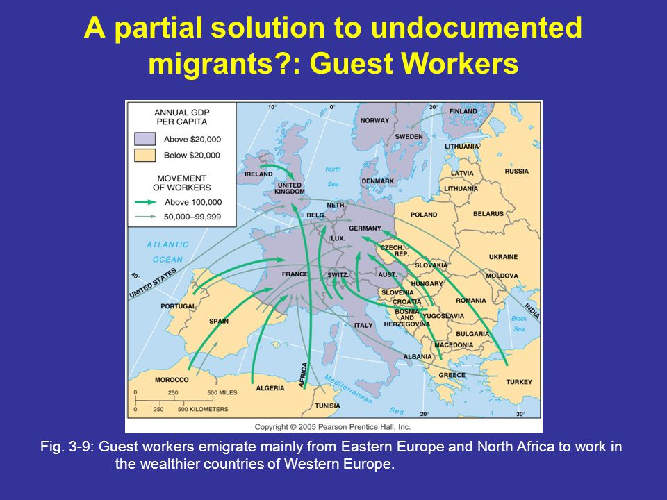 A partial solution to undocumented migrants : Guest Workers