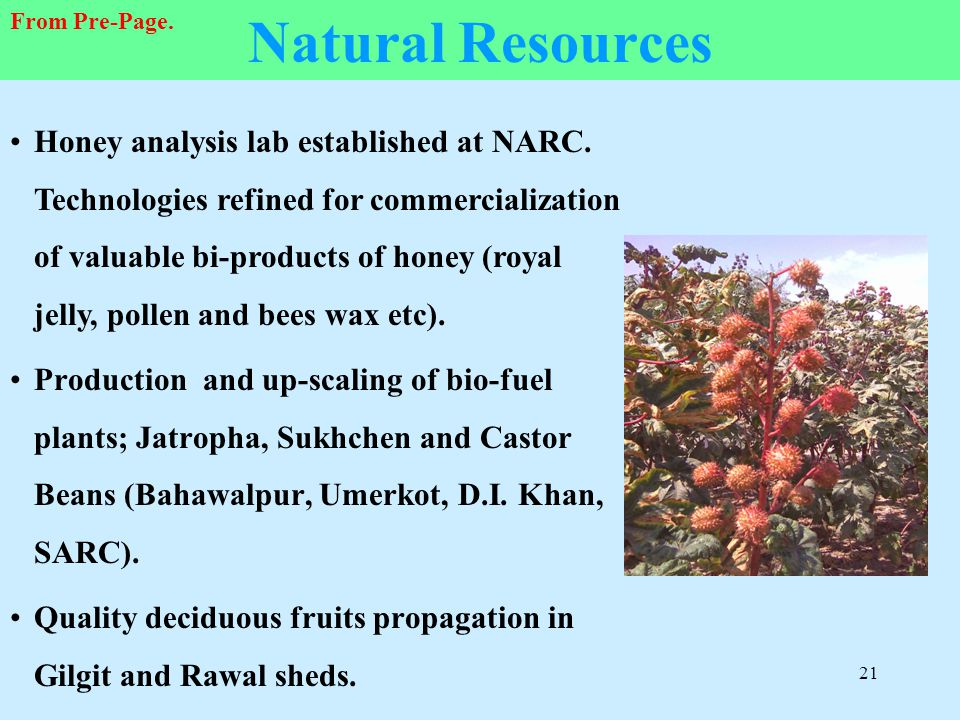 Natural Resources From Pre-Page.