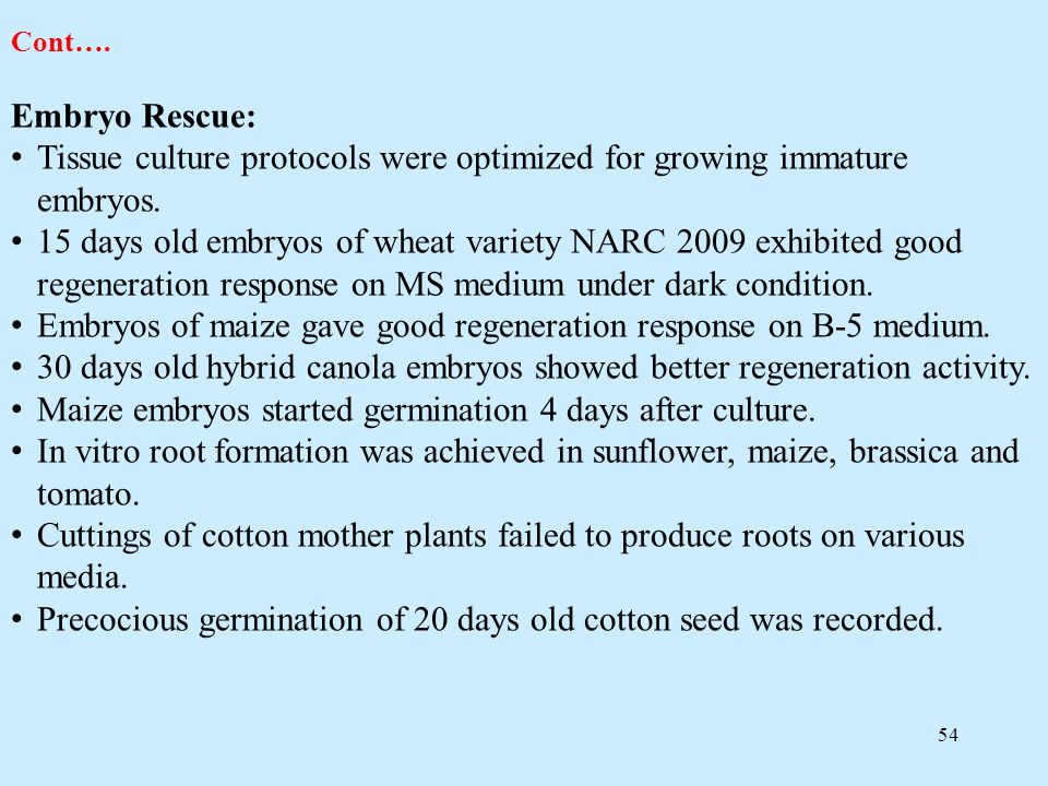 Tissue culture protocols were optimized for growing immature embryos.