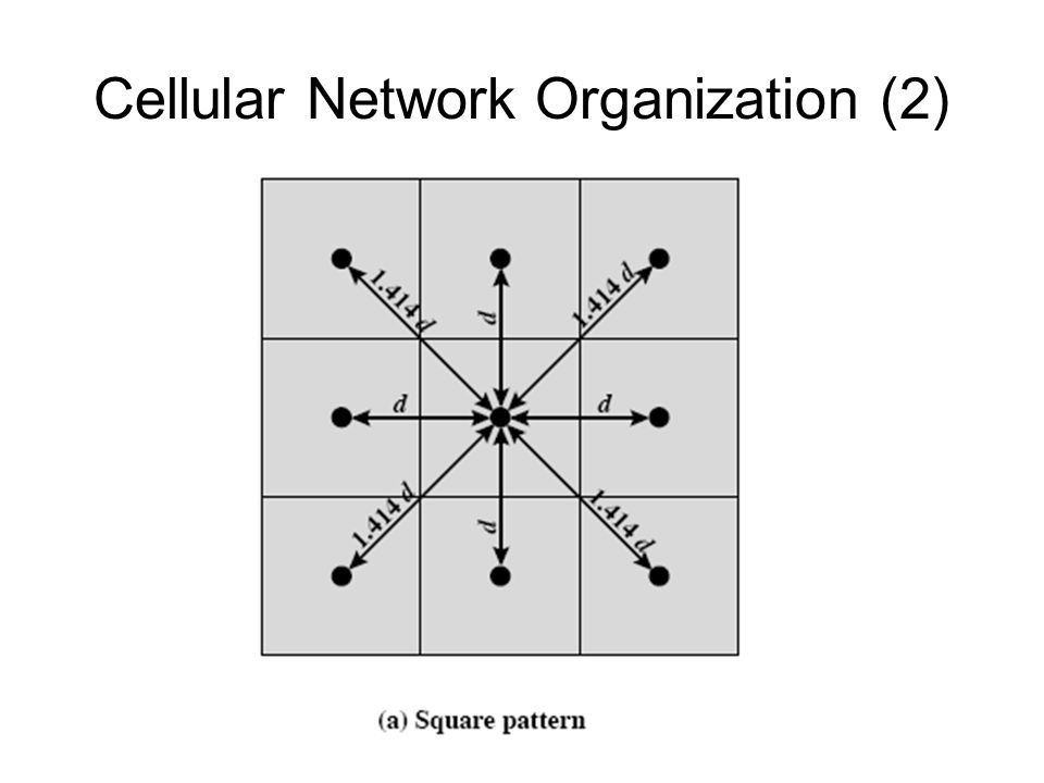 Cellular Network Organization (2)