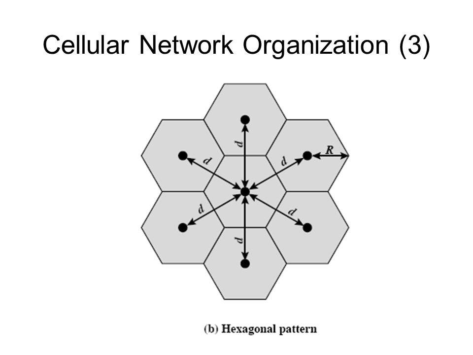 Cellular Network Organization (3)