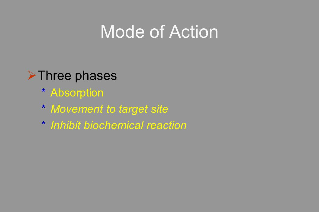 Mode of Action Three phases Absorption Movement to target site