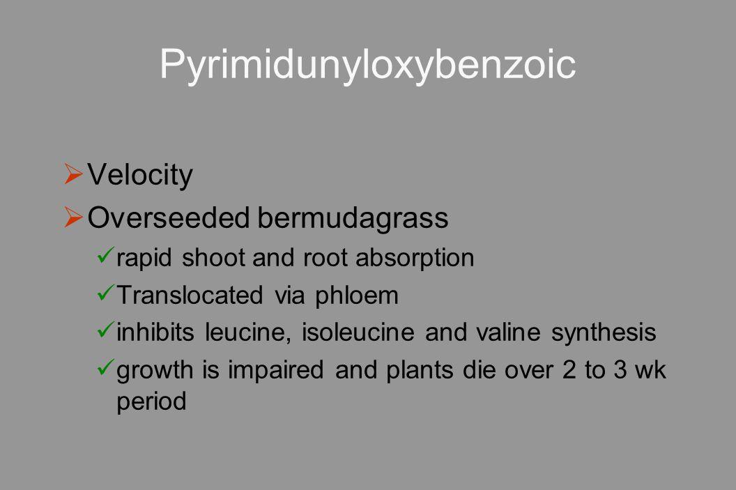 Pyrimidunyloxybenzoic