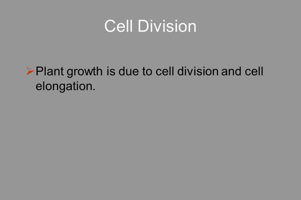 Cell Division Plant growth is due to cell division and cell elongation.