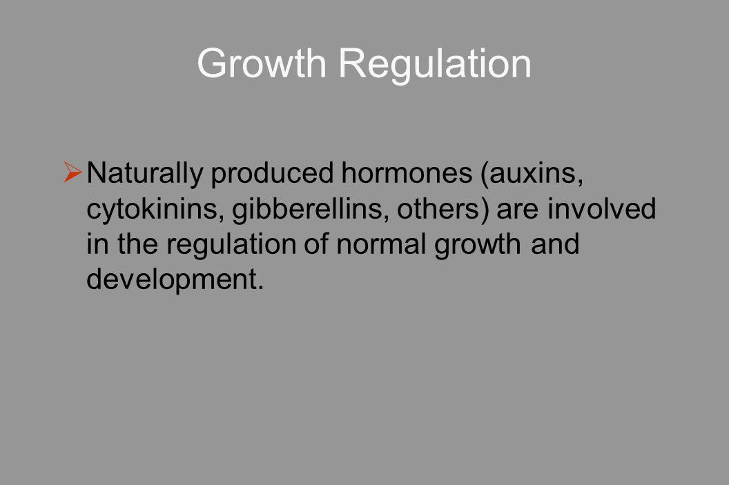 Growth Regulation