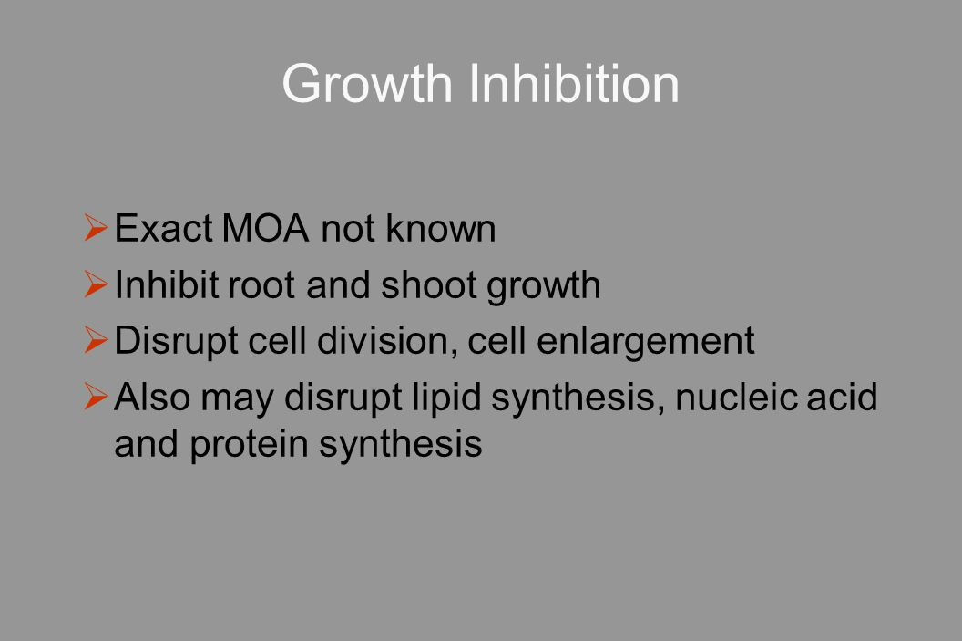 Growth Inhibition Exact MOA not known Inhibit root and shoot growth