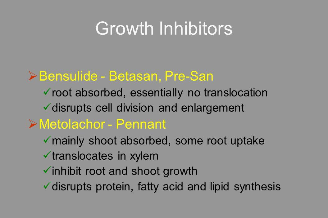 Growth Inhibitors Bensulide - Betasan, Pre-San Metolachor - Pennant