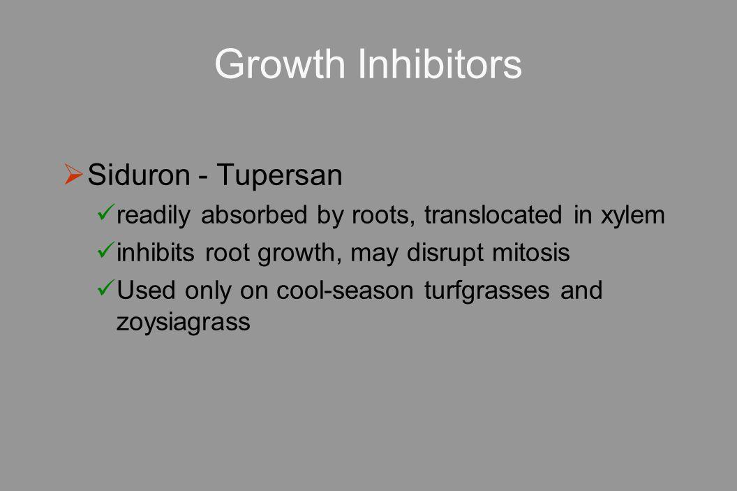 Growth Inhibitors Siduron - Tupersan