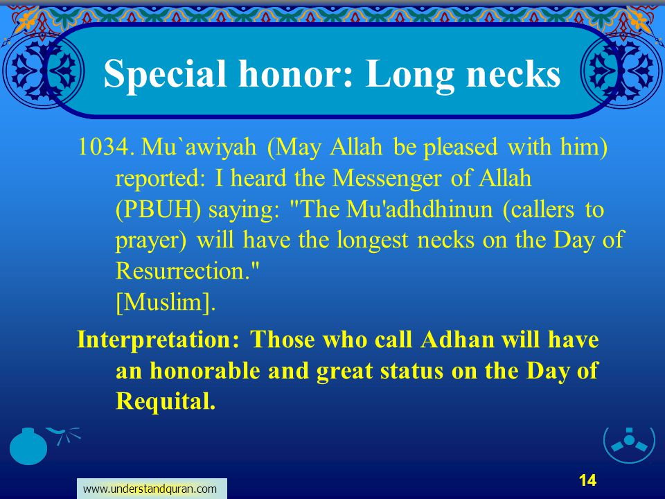 Special honor: Long necks