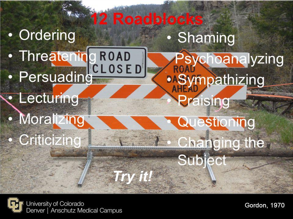 12 Roadblocks Ordering Shaming Threatening Psychoanalyzing Persuading