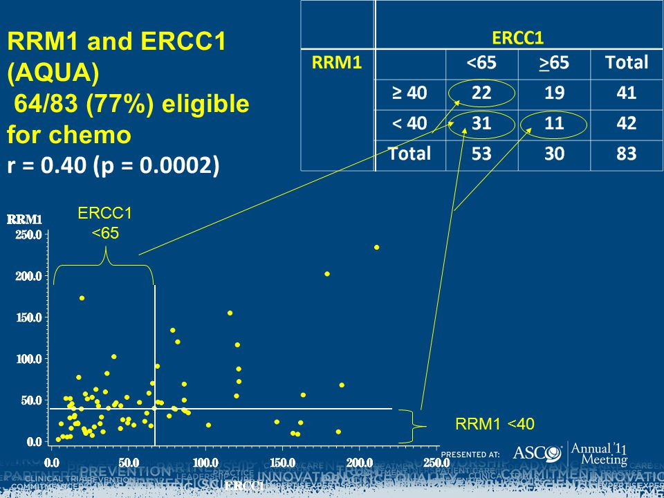 RRM1 and ERCC1 (AQUA) 64/83 (77%) eligible for chemo r = 0. 40 (p = 0