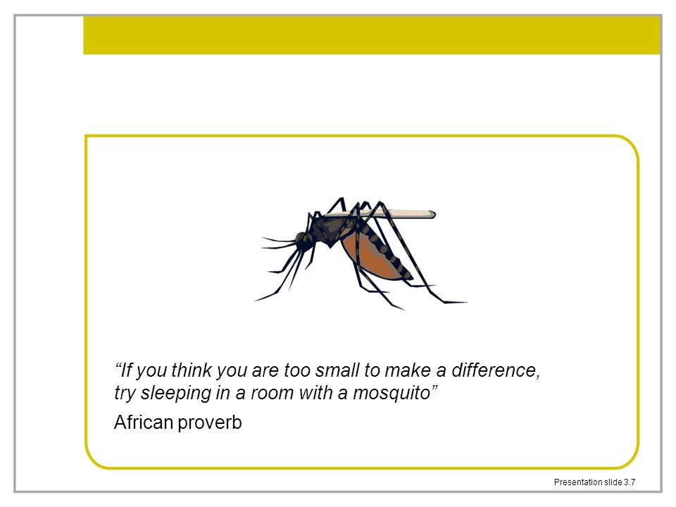 If you think you are too small to make a difference, try sleeping in a room with a mosquito