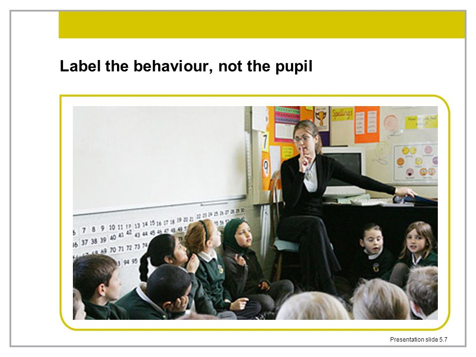 Label the behaviour, not the pupil