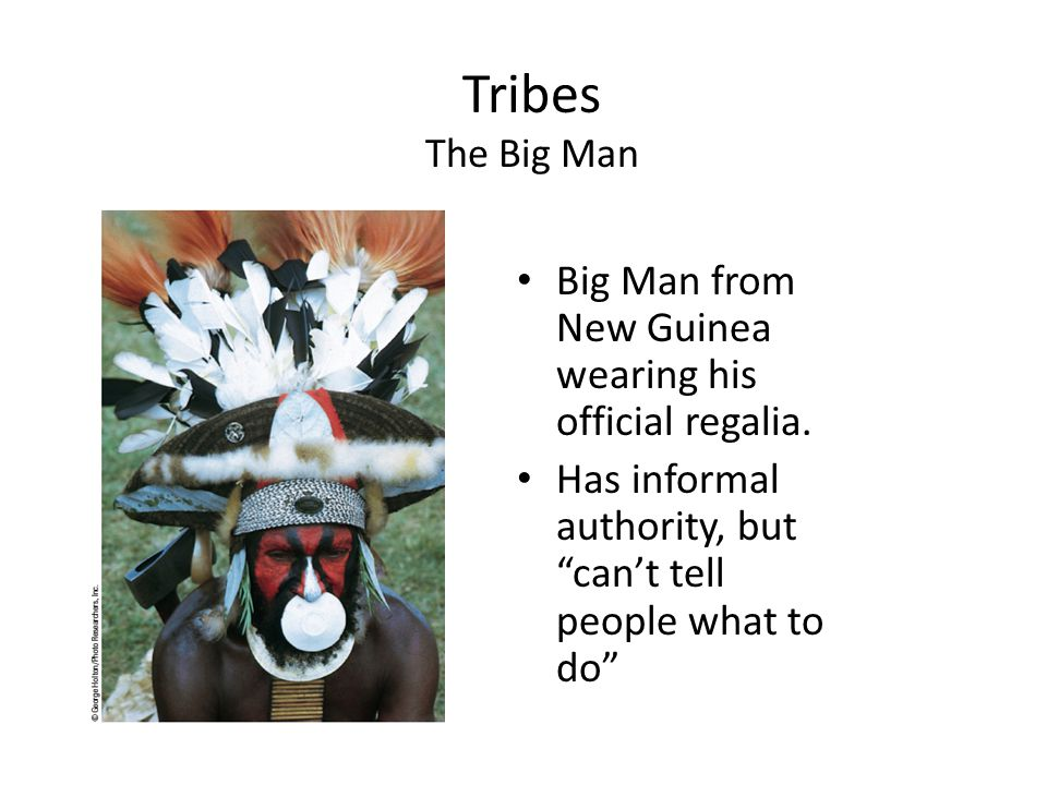 Tribes The Big Man Big Man from New Guinea wearing his official regalia.