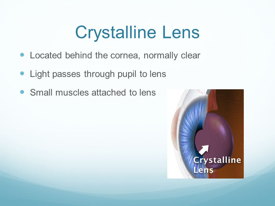 Crystalline Lens Located behind the cornea, normally clear