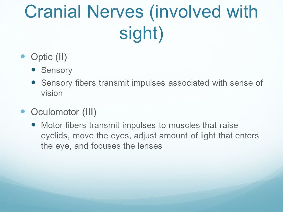 Cranial Nerves (involved with sight)
