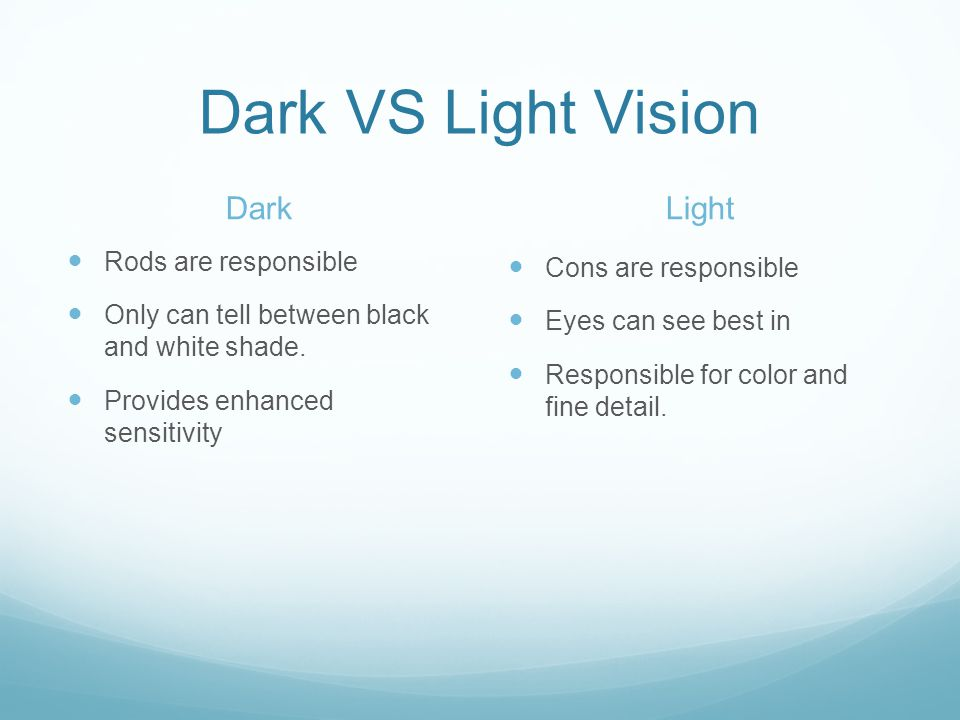 Dark VS Light Vision Dark Light Rods are responsible