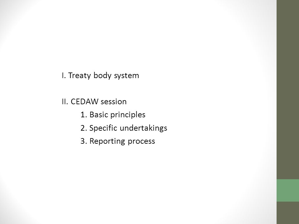 I. Treaty body system II. CEDAW session. 1. Basic principles.