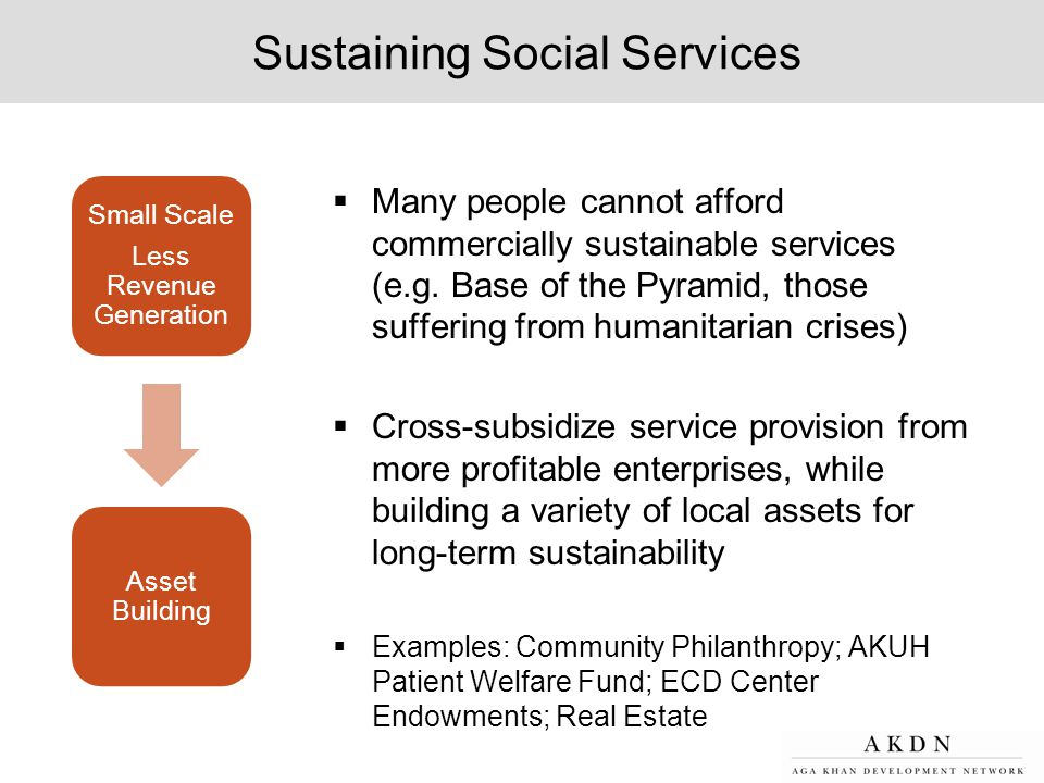 Sustaining Social Services