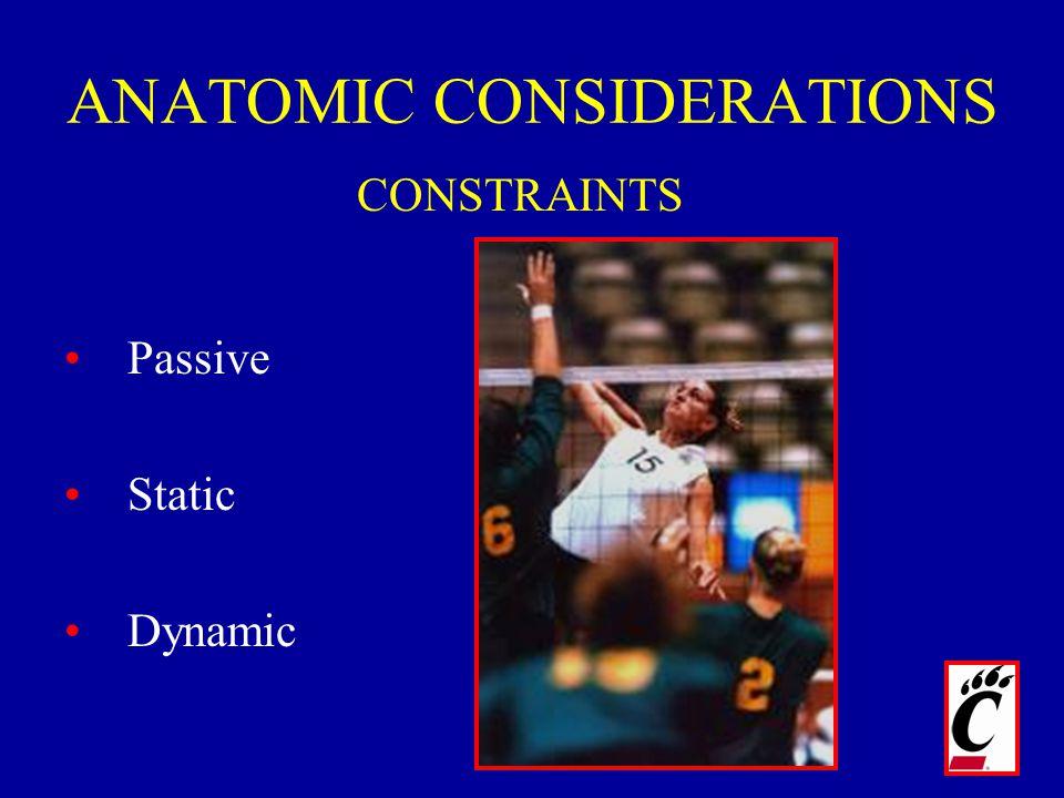 ANATOMIC CONSIDERATIONS