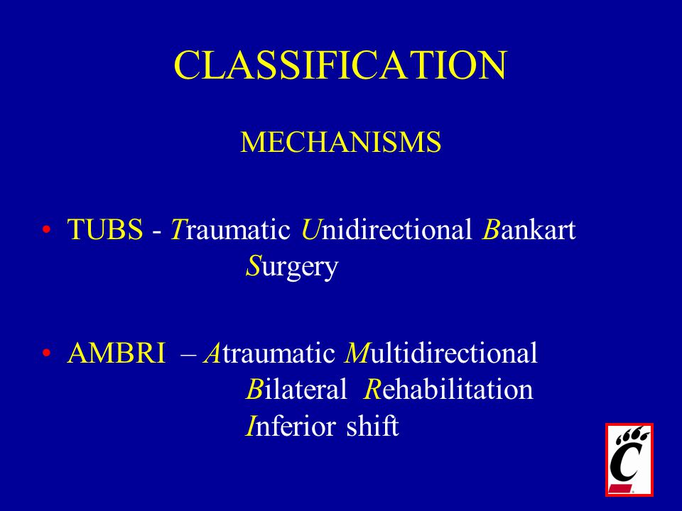 CLASSIFICATION MECHANISMS