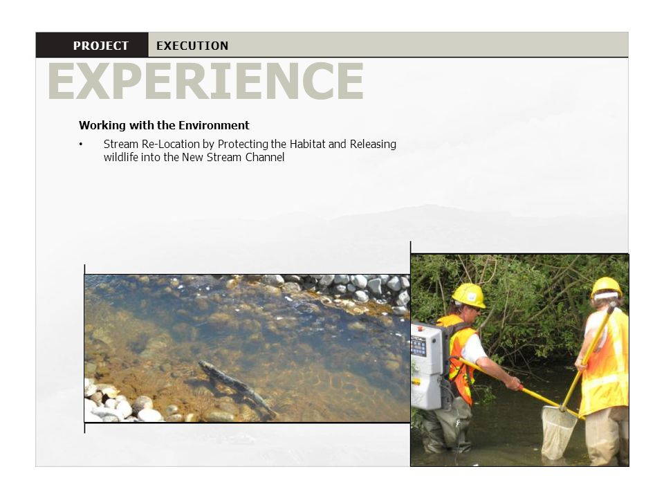EXPERIENCE PROJECT EXECUTION Working with the Environment