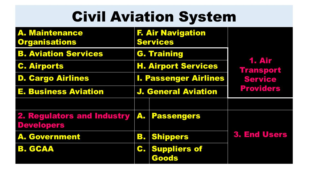 1. Air Transport Service Providers