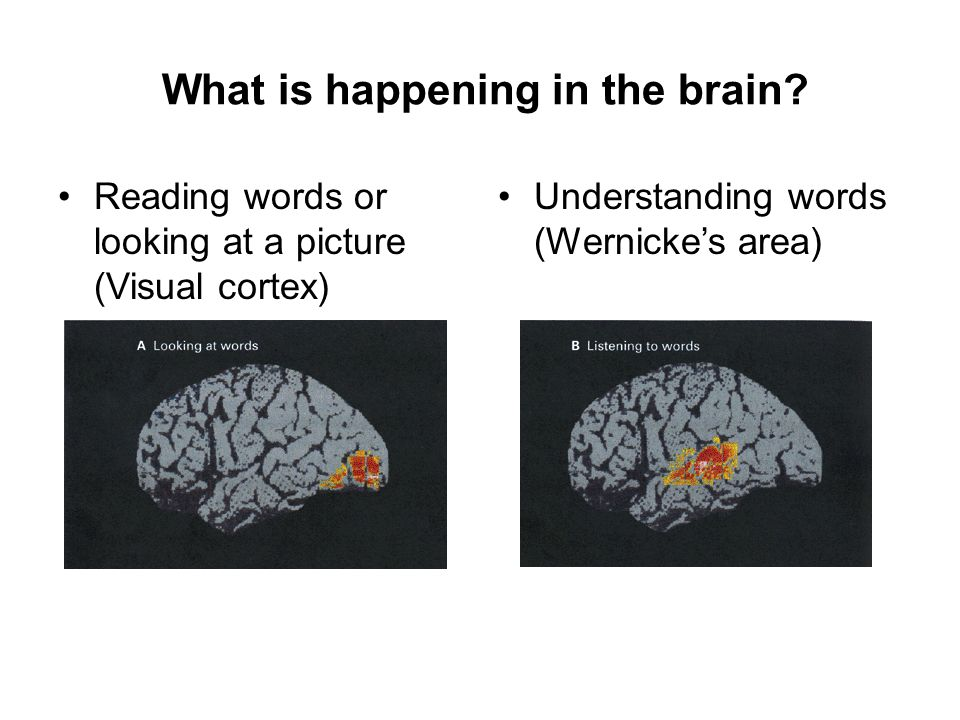 What is happening in the brain
