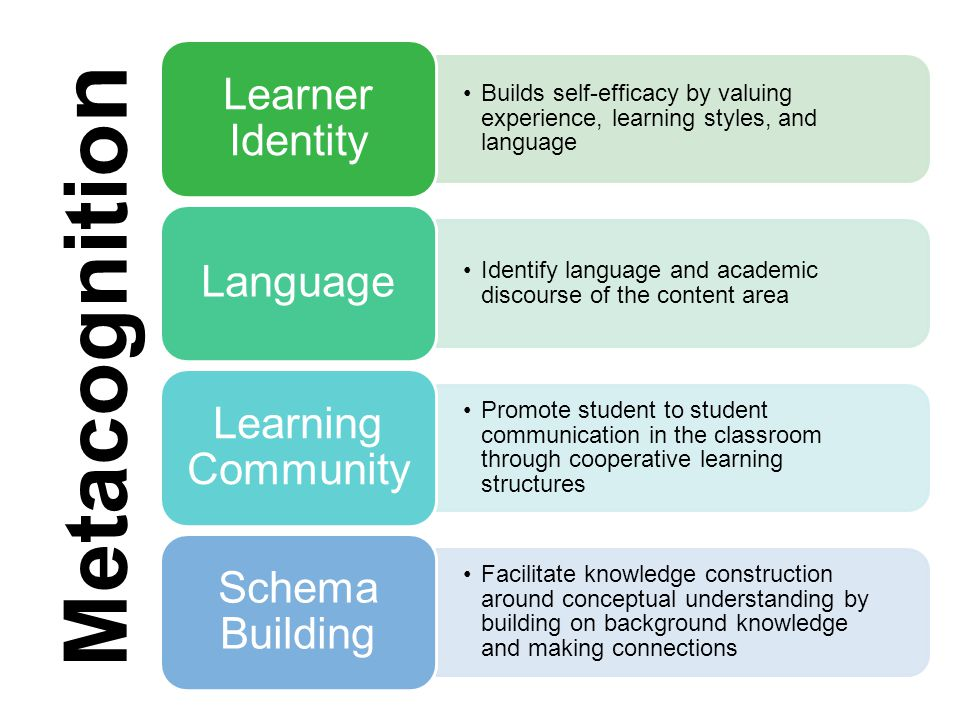Learner Identity Builds self-efficacy by valuing experience, learning styles, and language. Language.