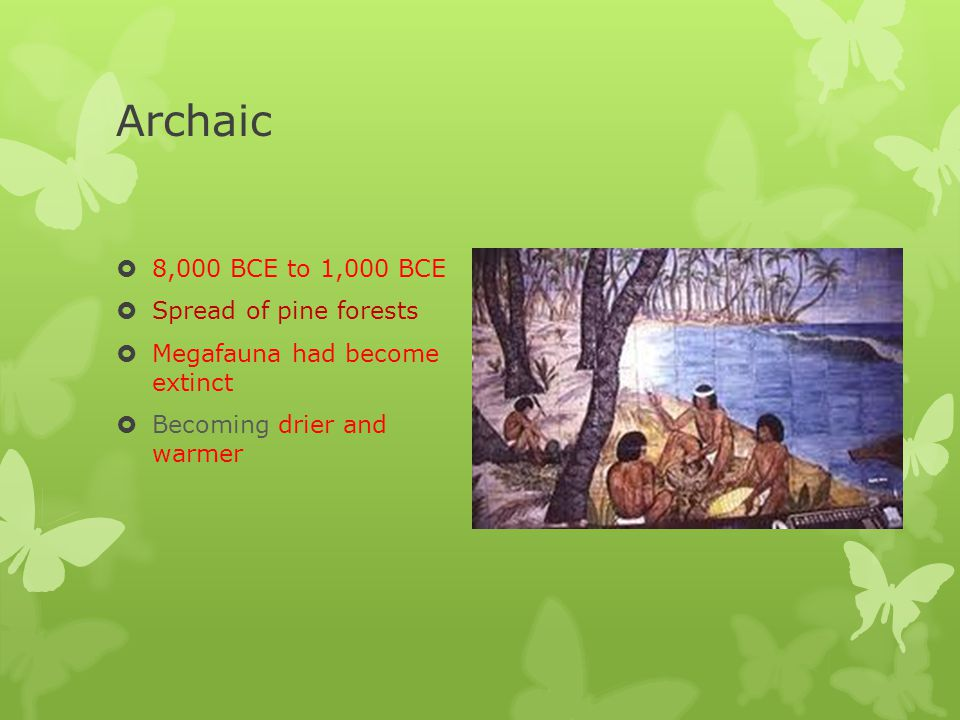 Archaic 8,000 BCE to 1,000 BCE Spread of pine forests