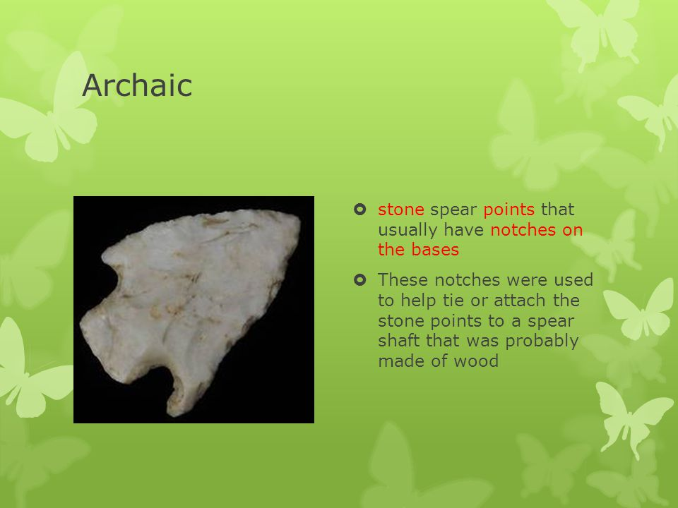 Archaic stone spear points that usually have notches on the bases