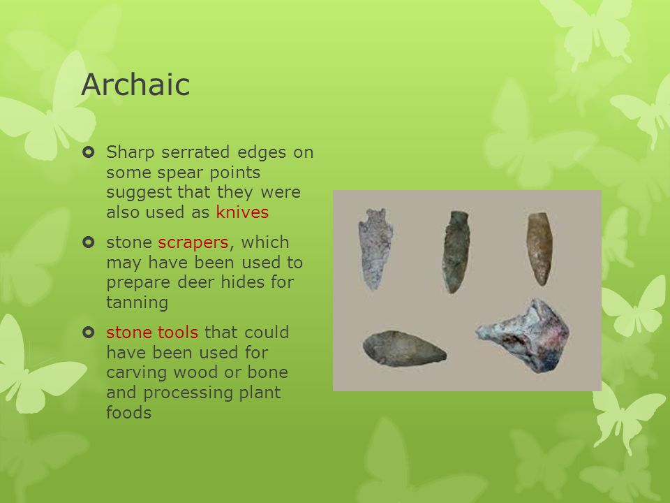 Archaic Sharp serrated edges on some spear points suggest that they were also used as knives.