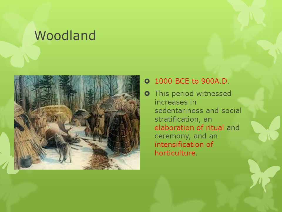 Woodland 1000 BCE to 900A.D.