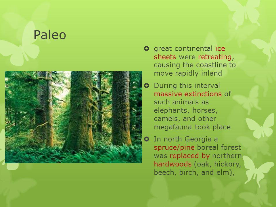 Paleo great continental ice sheets were retreating, causing the coastline to move rapidly inland.