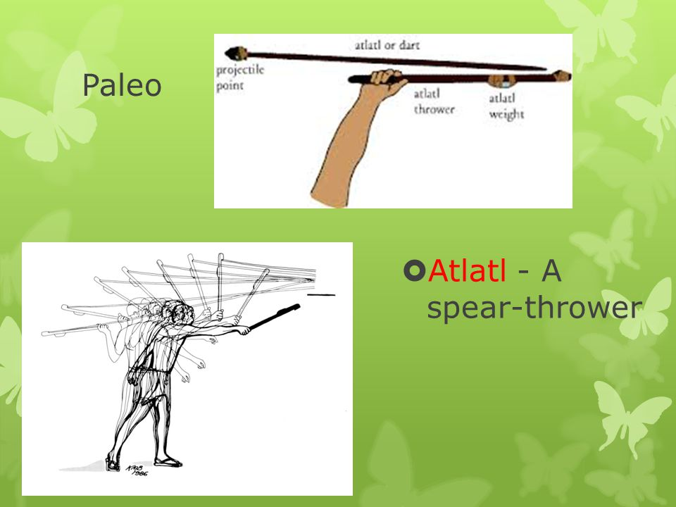 Paleo Atlatl - A spear-thrower