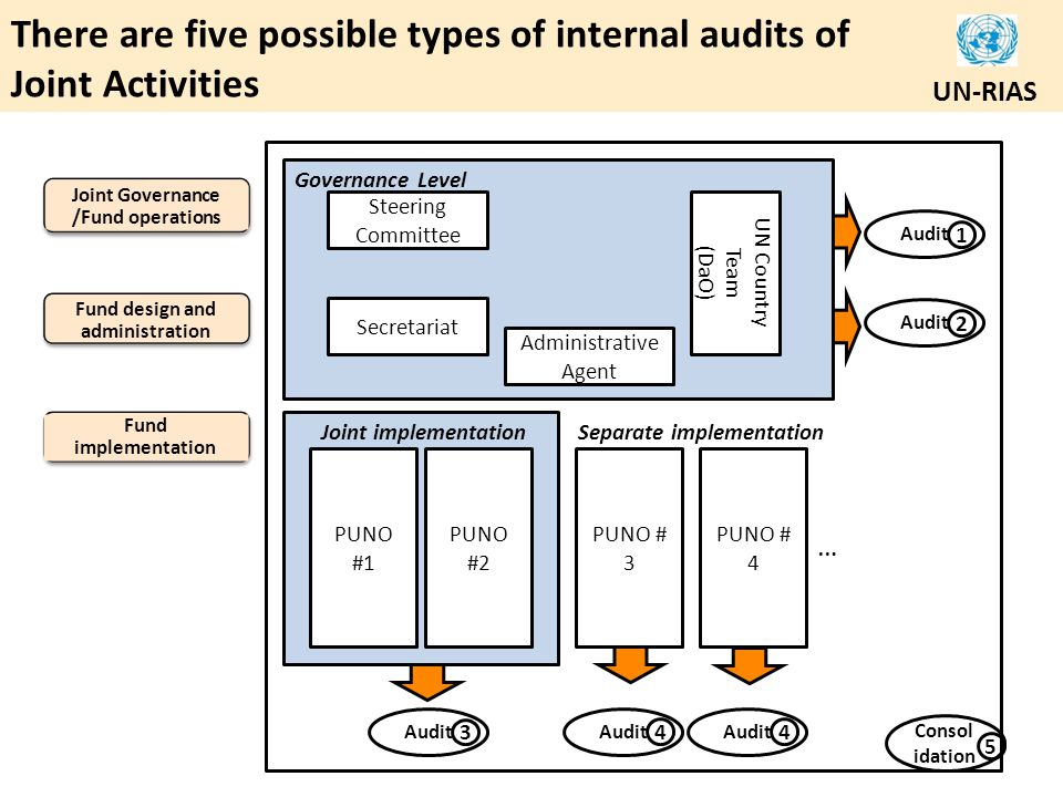 There are five possible types of internal audits of Joint Activities