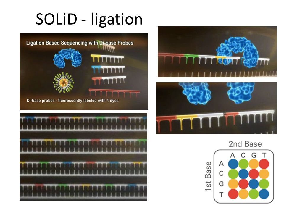 SOLiD - ligation