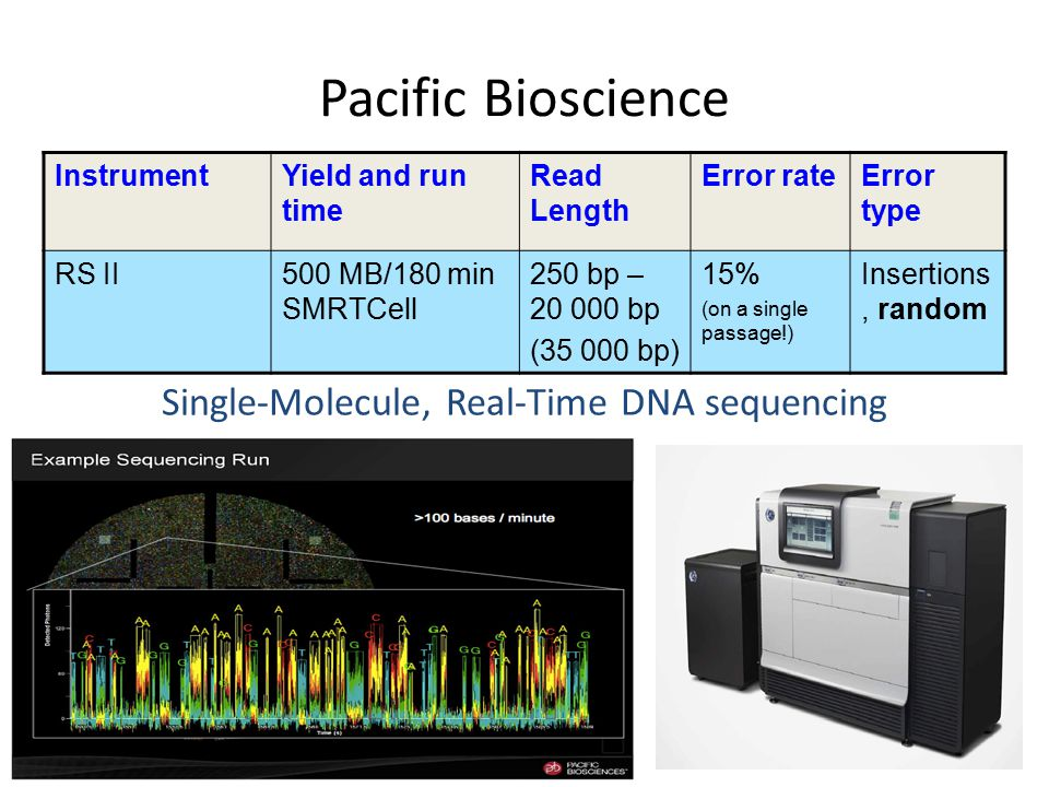 Single-Molecule, Real-Time DNA sequencing