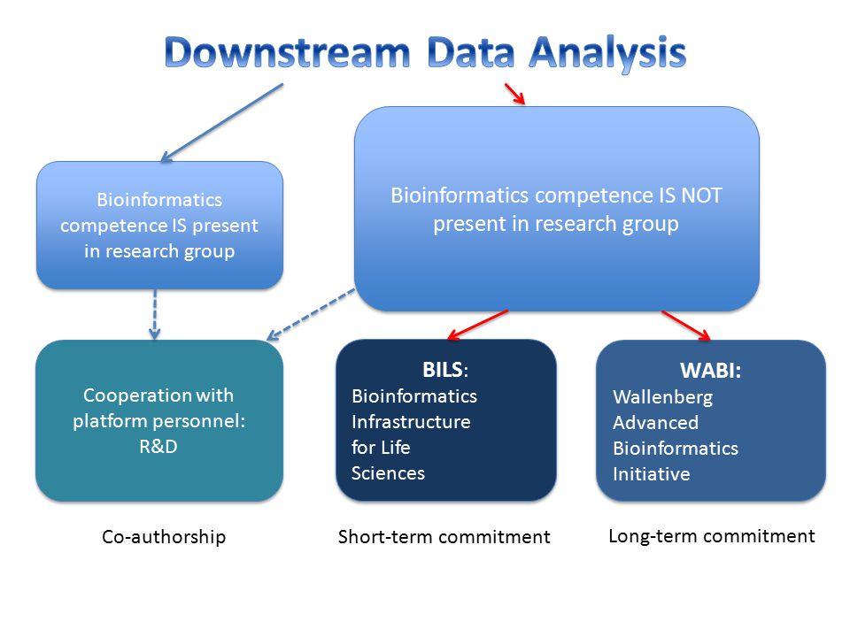 Downstream Data Analysis