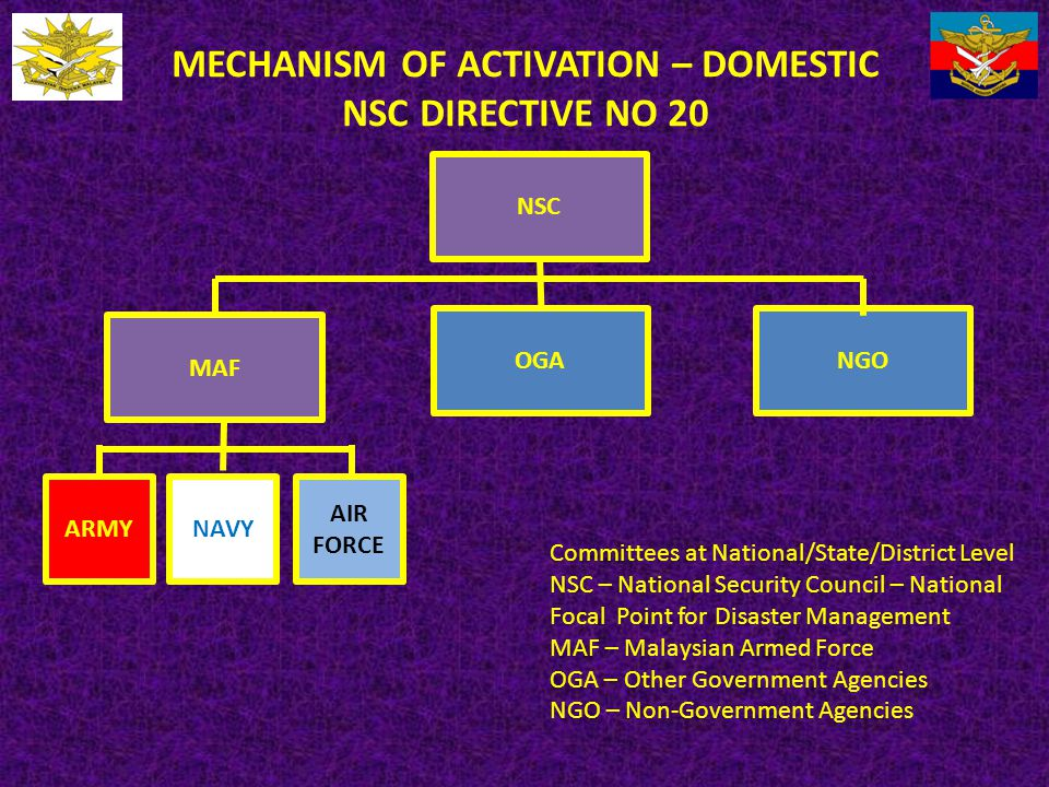 MECHANISM OF ACTIVATION – DOMESTIC NSC DIRECTIVE NO 20