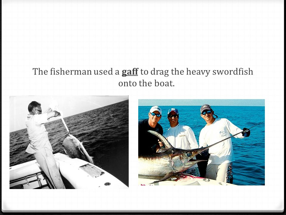 The fisherman used a gaff to drag the heavy swordfish onto the boat.