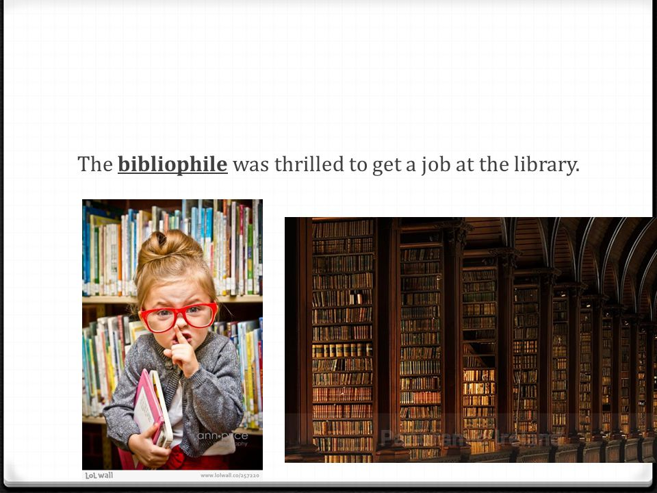 The bibliophile was thrilled to get a job at the library.