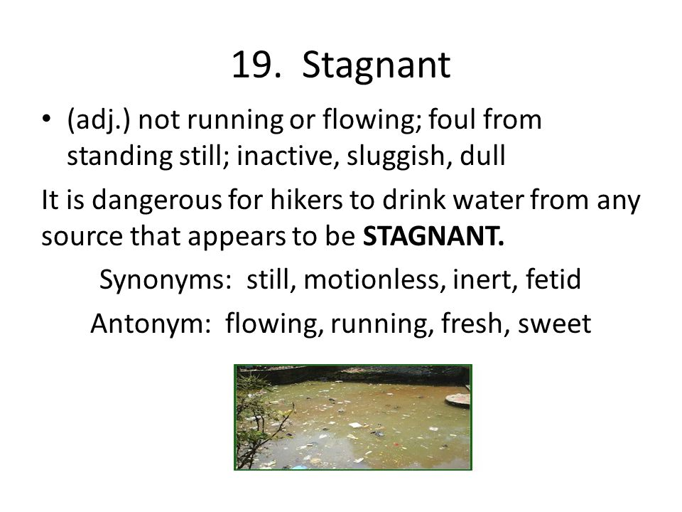 19. Stagnant (adj.) not running or flowing; foul from standing still; inactive, sluggish, dull.