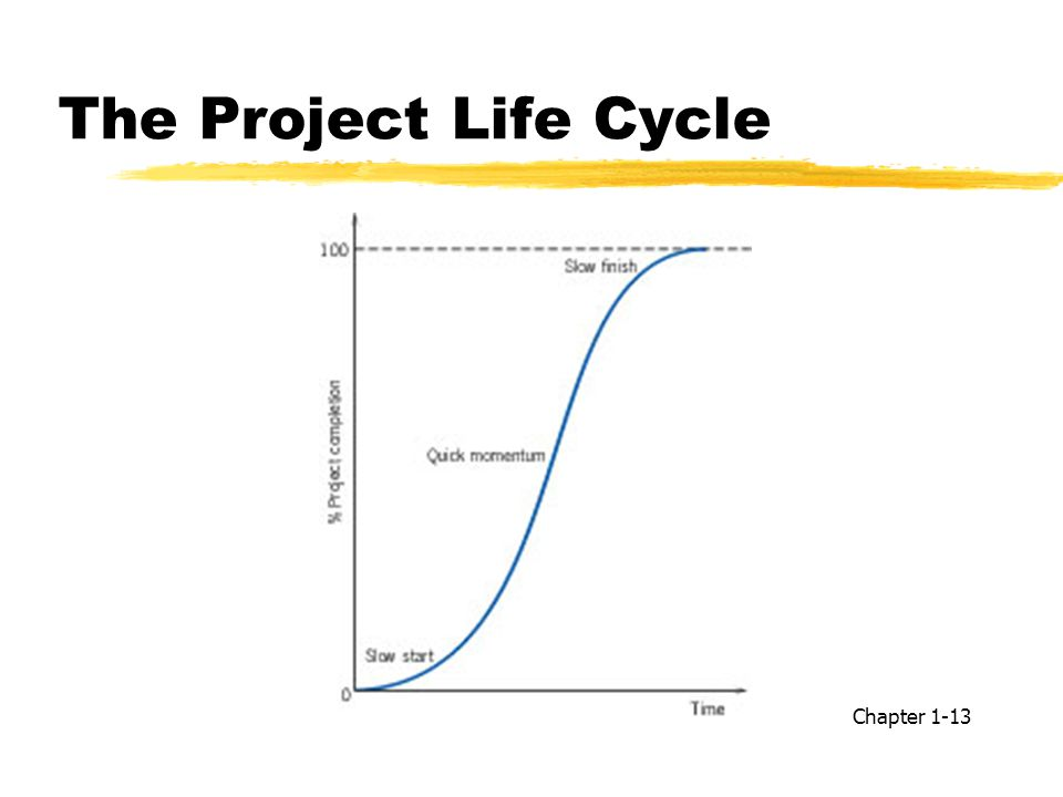 The Project Life Cycle Chapter 1-13